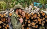 جاده سراب -اردبیل گلوگاه قاچاق چوب در شمالغرب