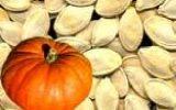 تخم کدو مورد اقبال کشاورزان سرابی